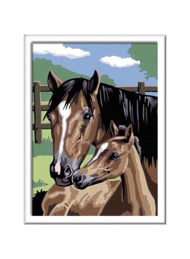 Schilderen op nummer - Paard met veulen