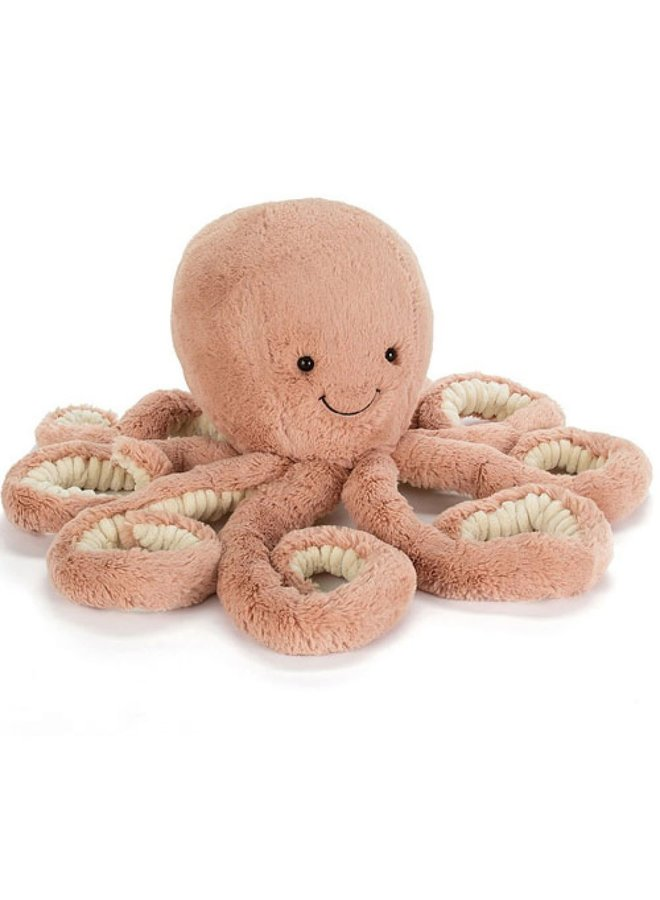 Odell octopus - Little