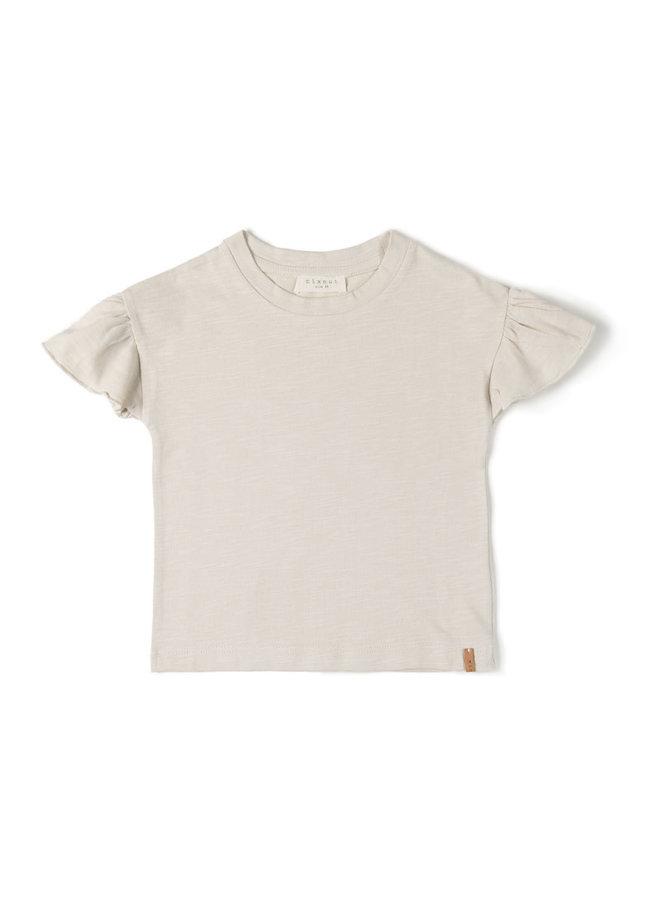 Fly shirt dust
