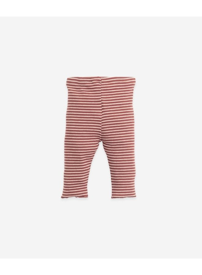 Striped Legging  with lace detail Botany - Farm