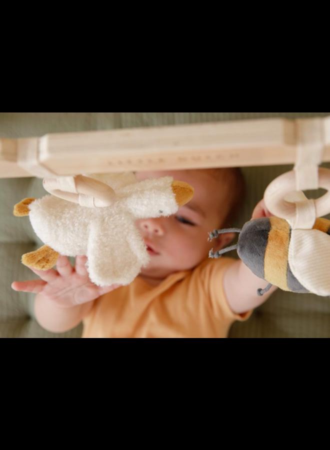 Babygym little goose
