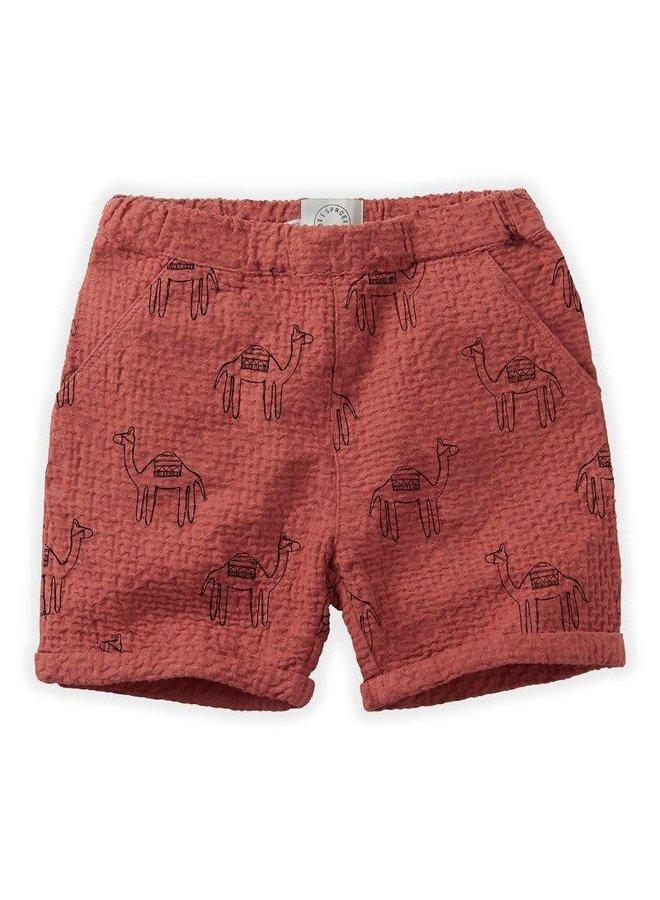 Short camel print - Cherry red