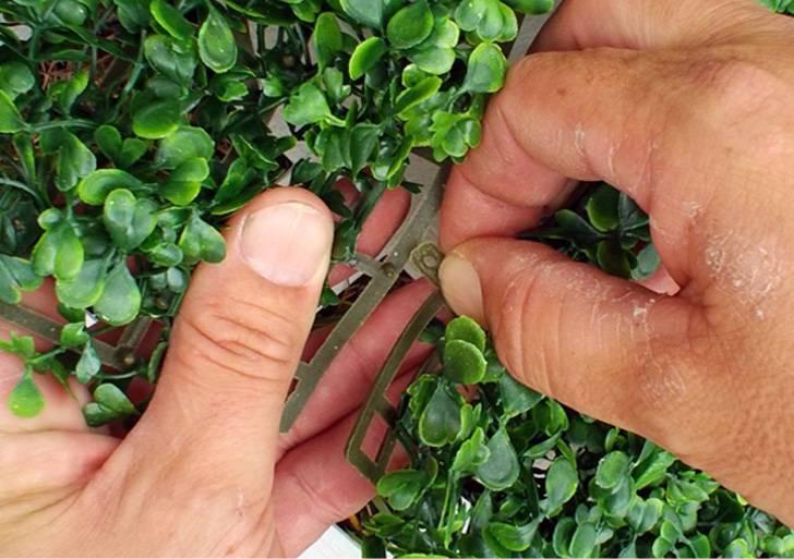 Tuinpoort blinderen met Laurier