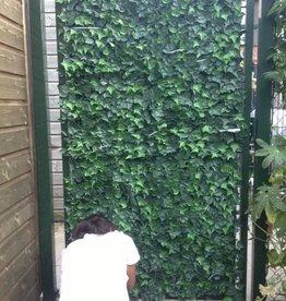 Kunst Hedera  speciaal voor tuinhekken