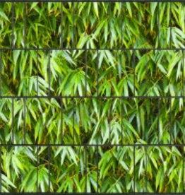 Gipea Gipea 3 D Band Bamboe