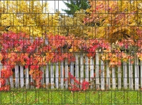 Gipea Easy To Fix Optimal Visibility Protection For Gate & Fence 3-d band Panorama Waterval 1 paneel