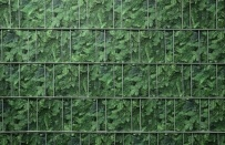 Tuinpoort dicht met 3-d band 10 meter plus 20 klemmen Bladmotief
