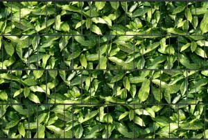 Gipea Tuinpoort dicht met 3-d band 10  stroken plus 20 klemmen Bladmotief - Copy