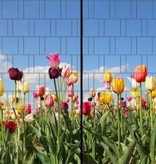 Gipea Easy To Fix Optimal Visibility Protection For Gate & Fence Gipea Easy Fix ( PANORAMA ) 2 panelen  DUTCH TULIP