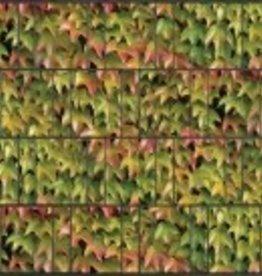 Gipea Design Band Natuurbladeren