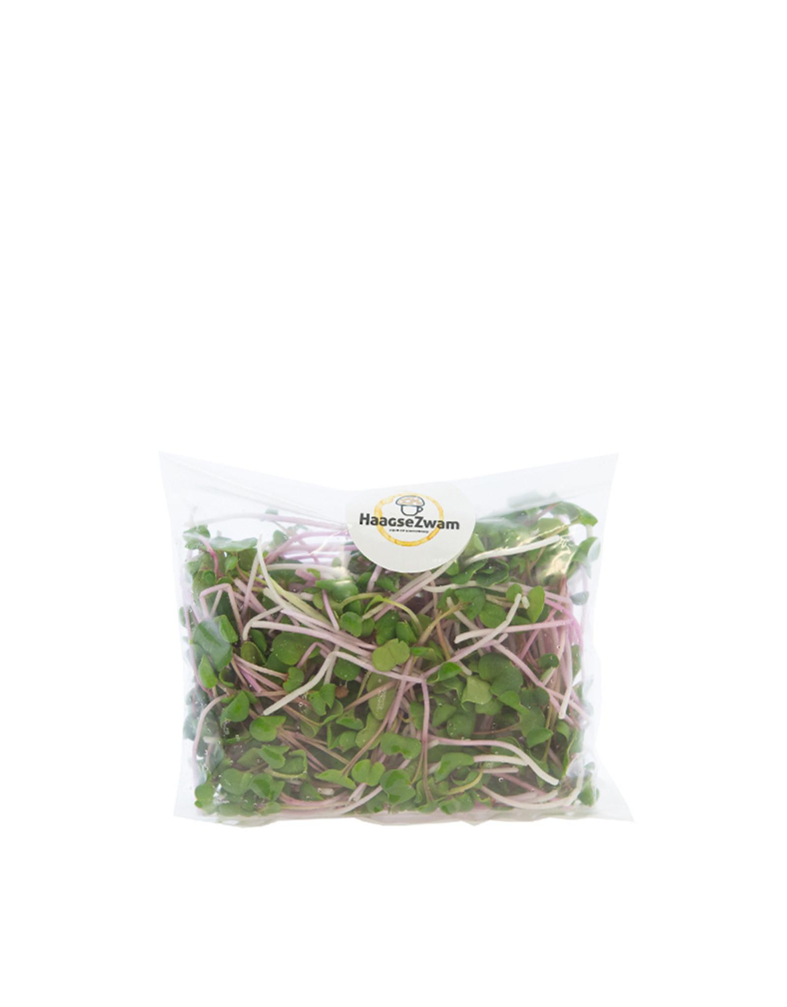 Haagse Groentjes Radijsmix - 100% bio microgroenten