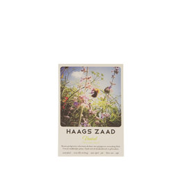 Haagse Honing Haags Zaad