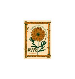 Haagse Honing Goudsbloem - Haags Zaad