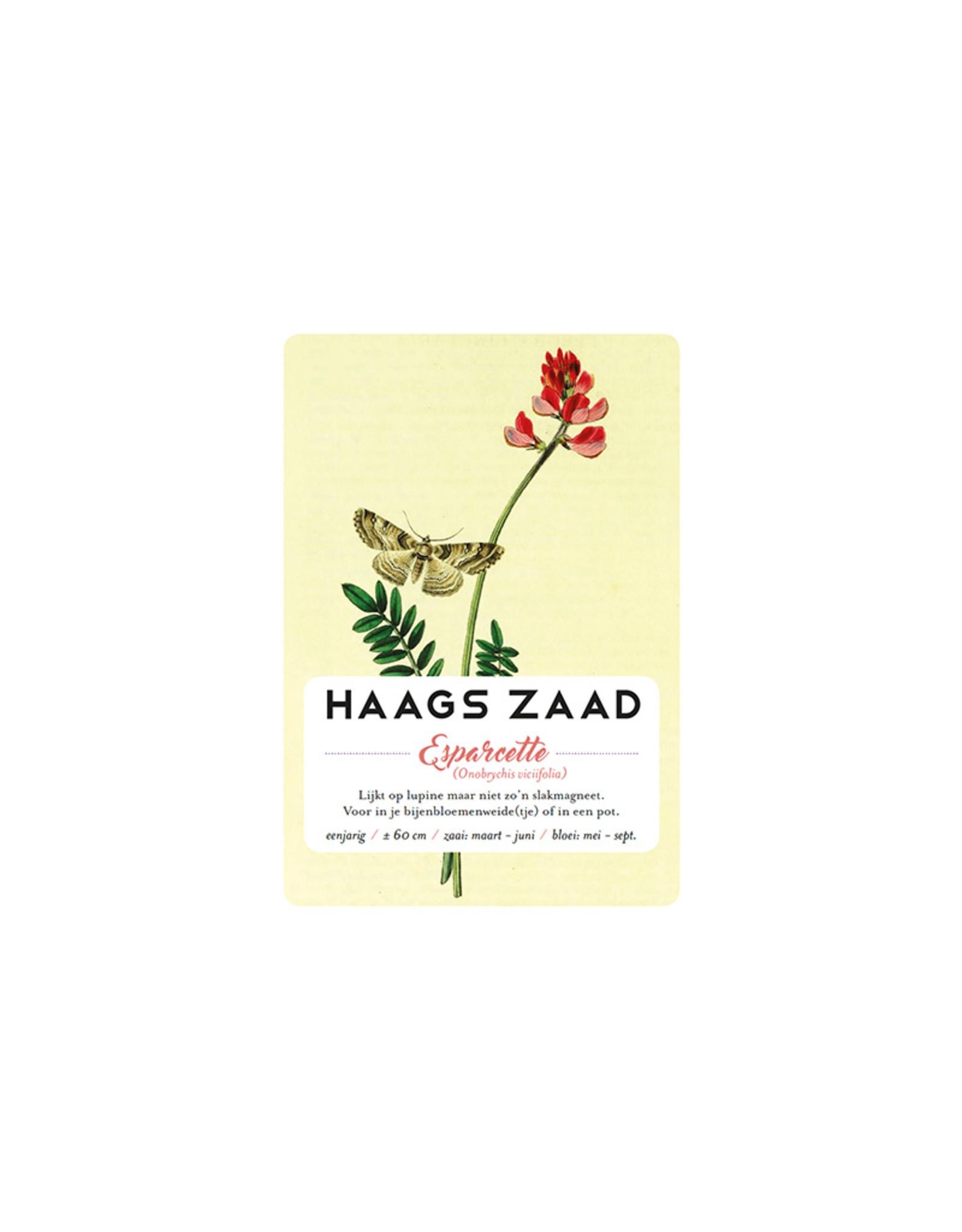 Haagse Honing Esparcette - Haags Zaad