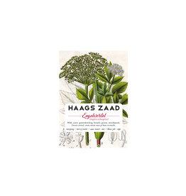 Haagse Honing Engelwortel - Haags Zaad