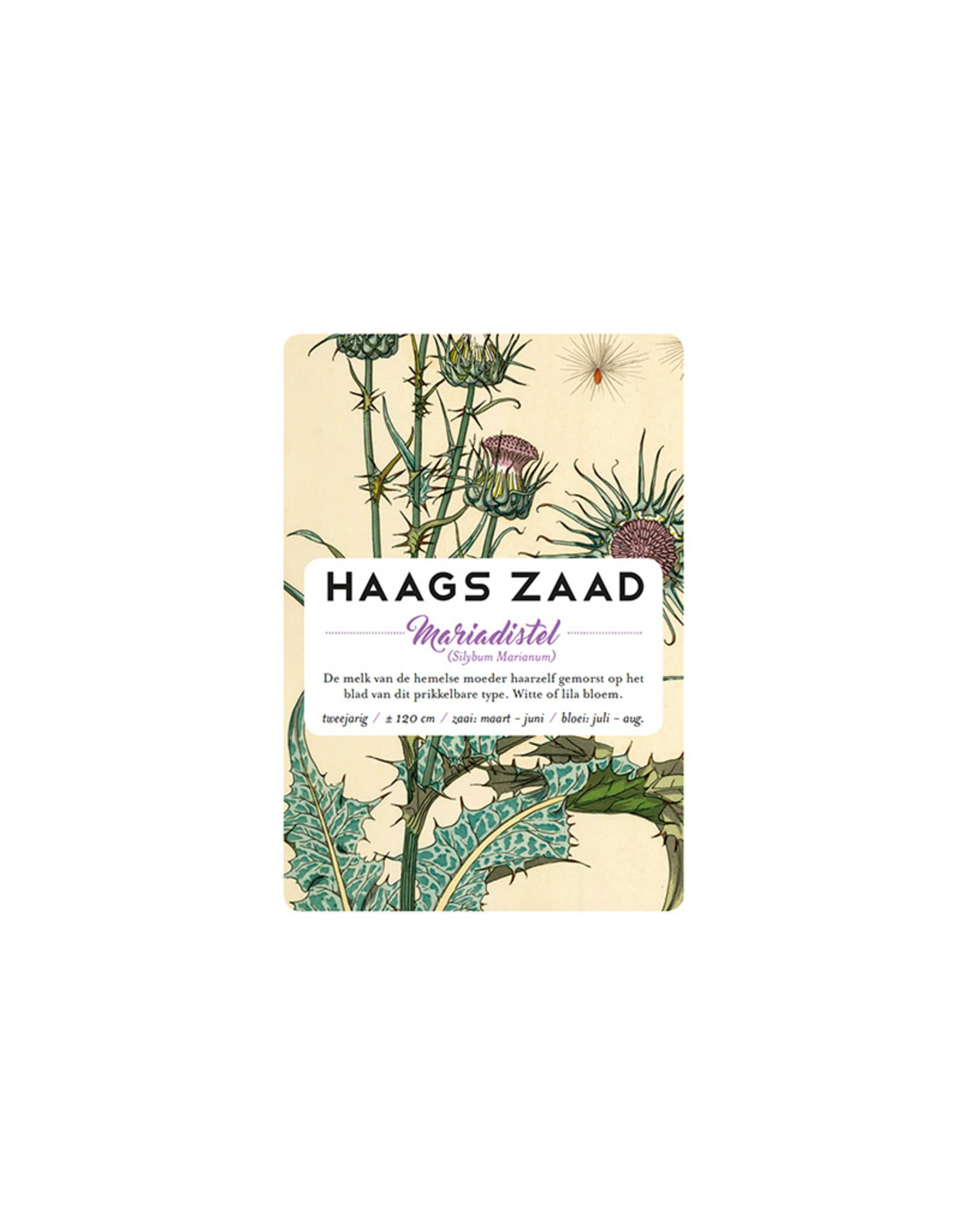 Haagse Honing Mariadistel - Haags Zaad