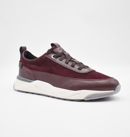 Santoni Sneakers bordeaux