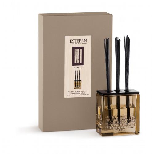 ESTEBAN - Diffuser Triptych Cedar 250ml-1