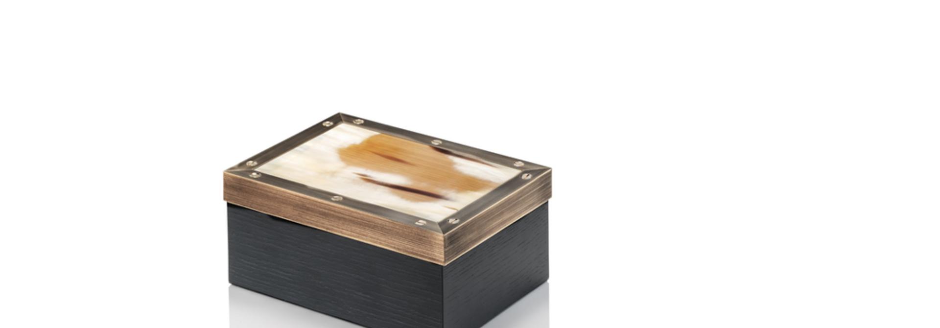 ARCAHORN - Zefiro Black Box