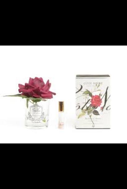 COTE NOIRE - Fleur Rose Rouge Carmin Vase Clair