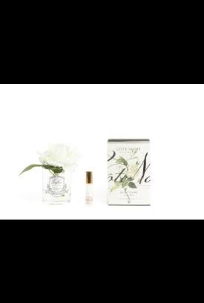 COTE NOIRE - Ivory Rose Flower Clear Vase