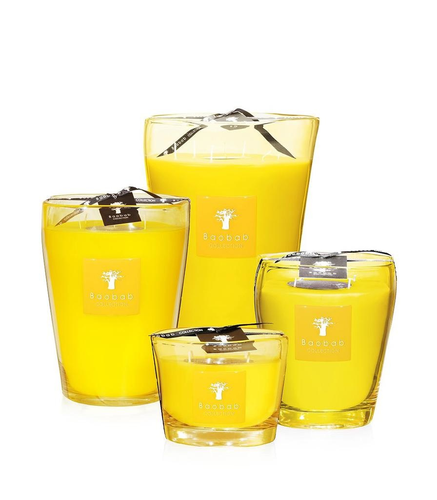 BAOBAB COLLECTION - Candle South Beach Max 10-2