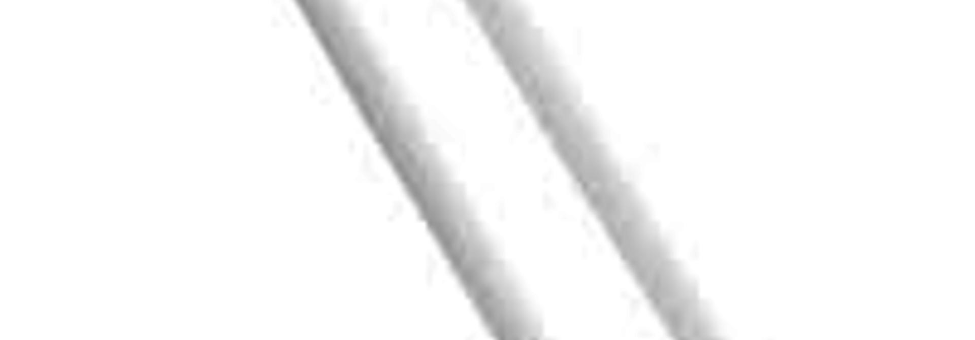 CUTIPOL - Goa Chopsticks 3 pcs White / Stainless steel