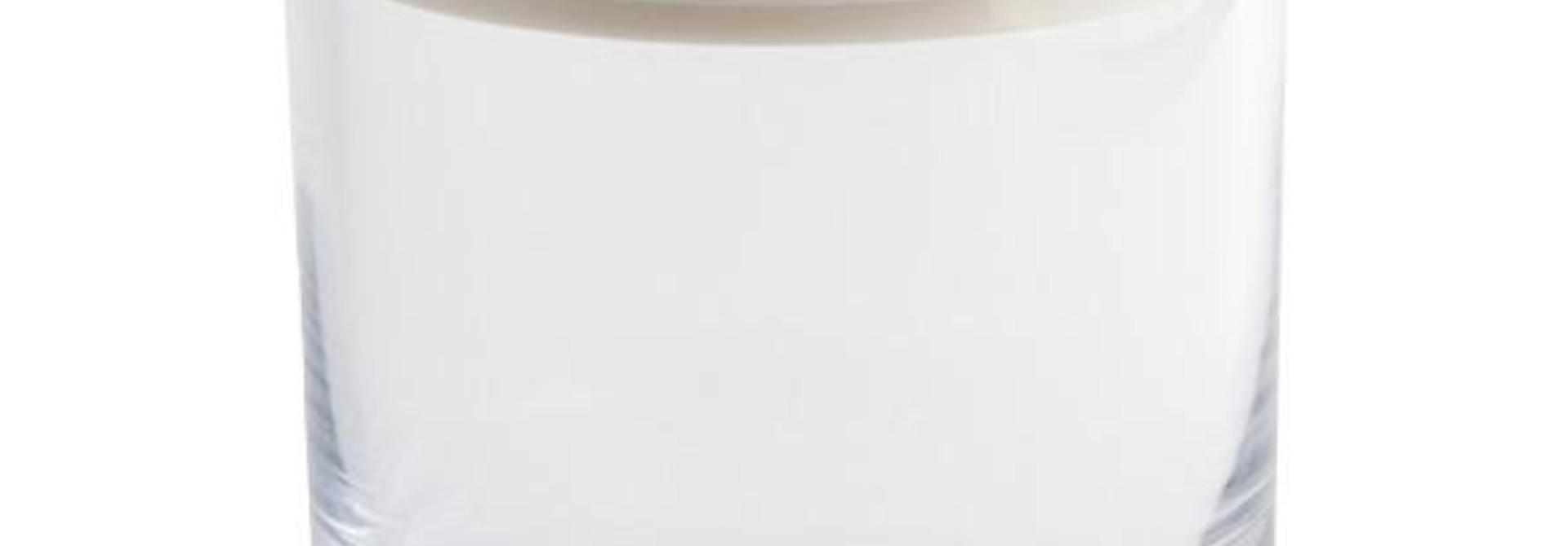 OBJETLUXE - Glass / Mother of Pearl Turtle Silver Jar