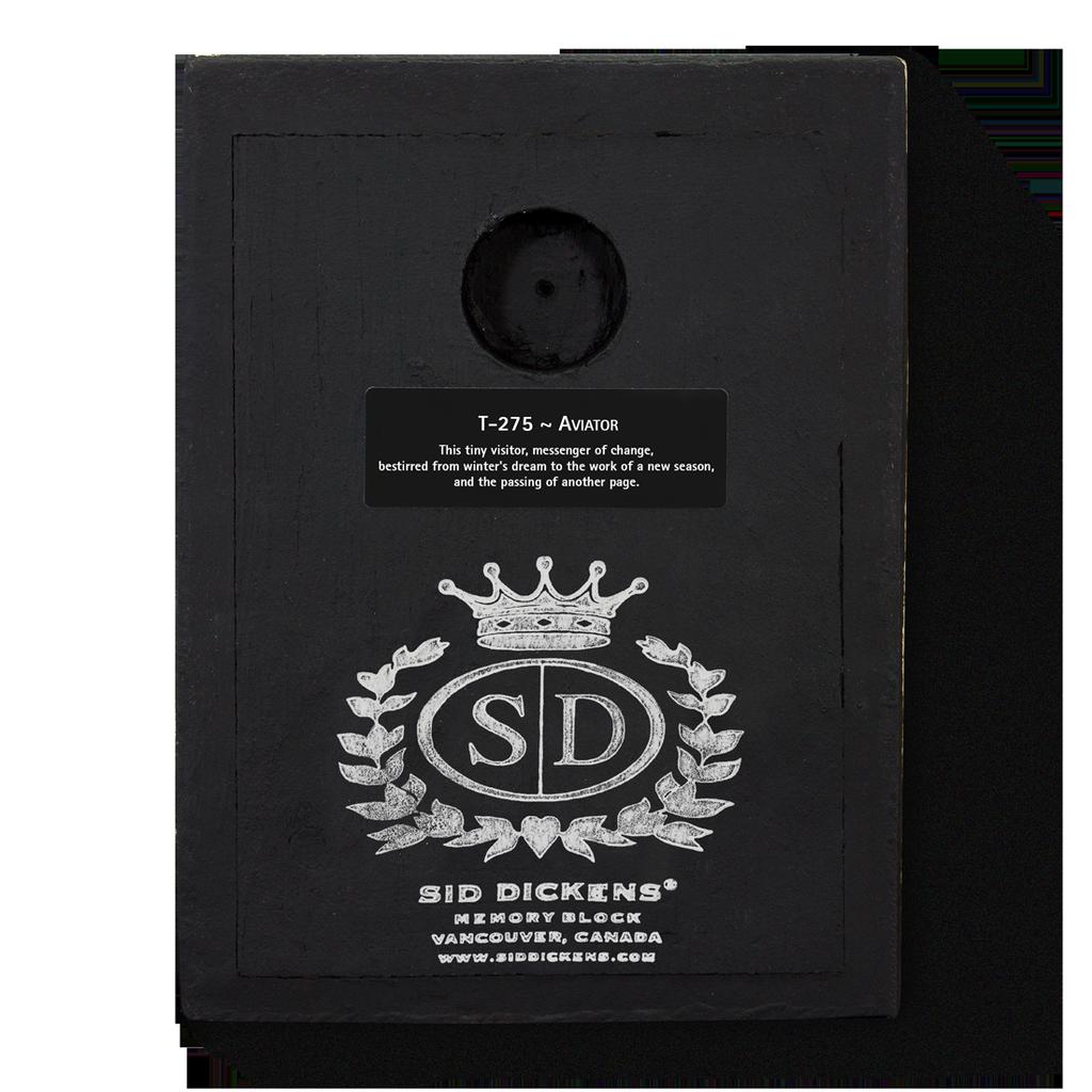 SID DICKENS - Aviator Gold Frame-4
