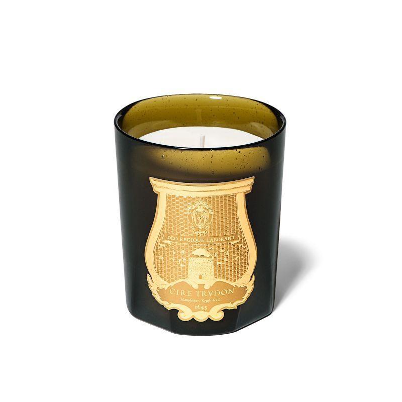 CIRE TRUDON - Candle Ernesto 270gr-1