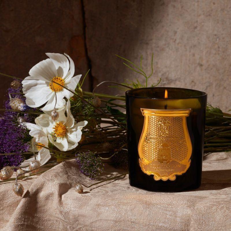 CIRE TRUDON - Candle Ernesto 270gr-4