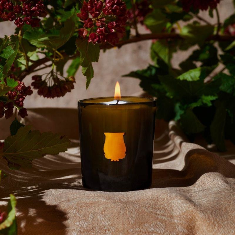 CIRE TRUDON - Candle Admirable 270gr-5