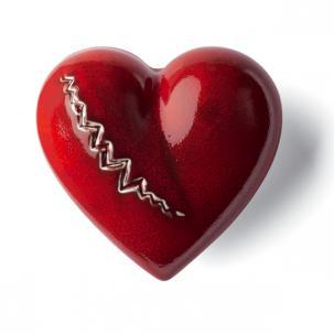 DENZ HERZ - Heart Cardiac Rouge-1