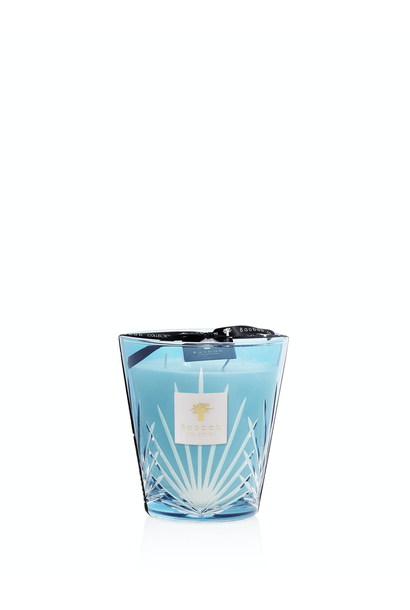 BAOBAB COLLECTION - Candle West Palm Max 16