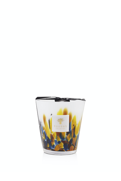 BAOBAB COLLECTION - Candle Rainforest Mayumbe Max 16