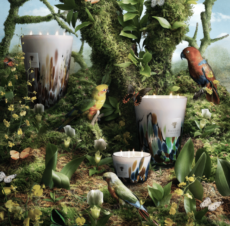 BAOBAB COLLECTION - Candle Rainforest Mayumbe Max 16-3