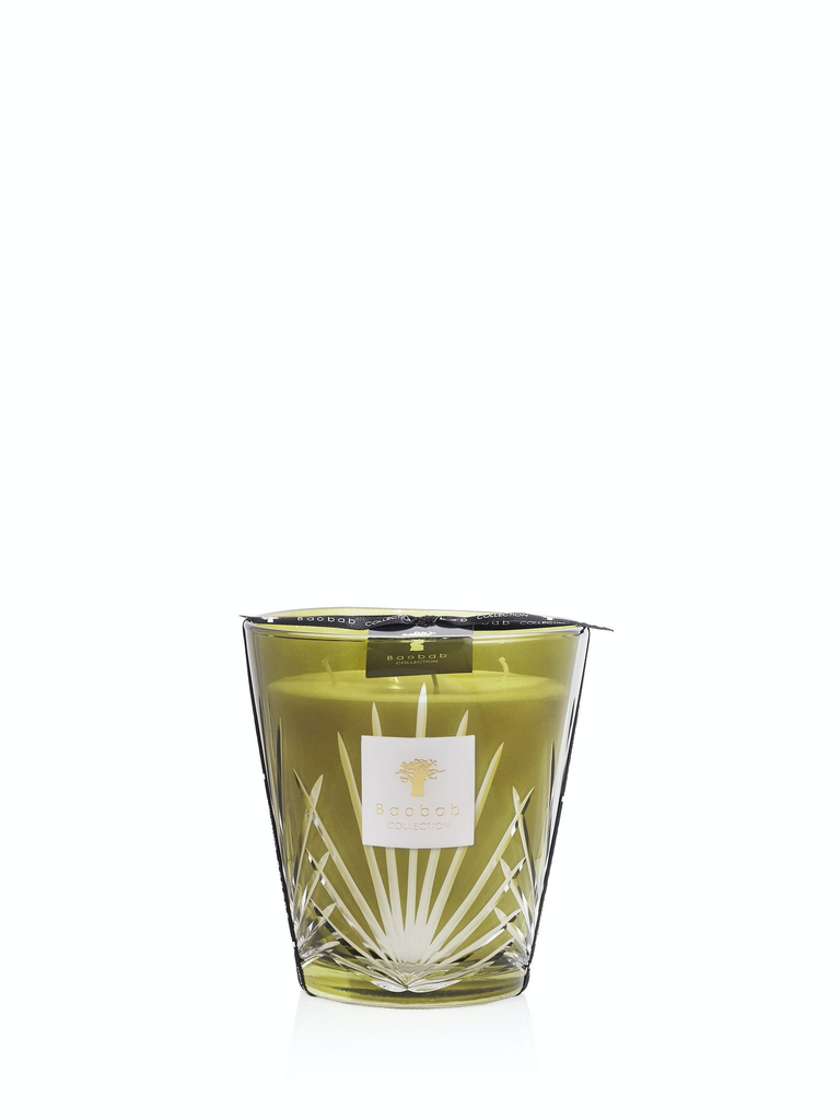 BAOBAB COLLECTION - Candle Palm Springs Max 16-1