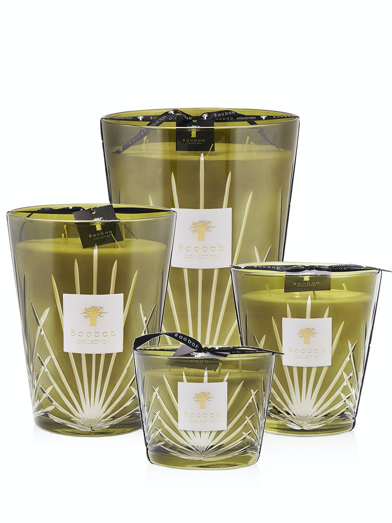 BAOBAB COLLECTION - Candle Palm Springs Max 16-2