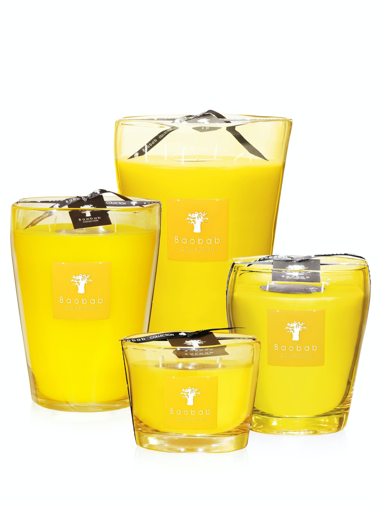 BAOBAB COLLECTION - Candle South Beach Club Max 16-2
