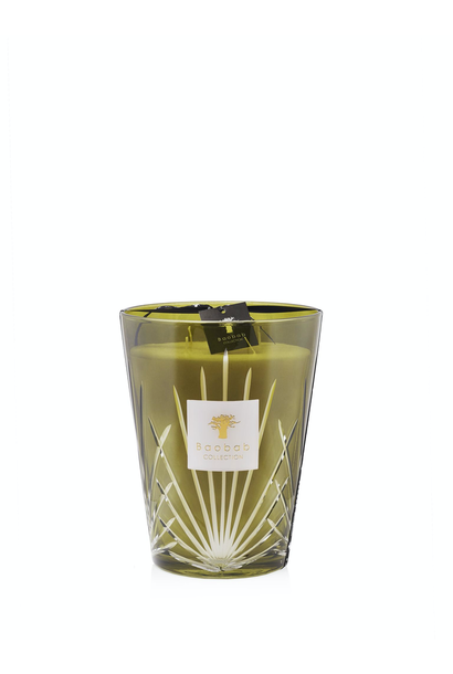 BAOBAB COLLECTION - Candle Palm Springs Max 24