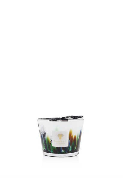 BAOBAB COLLECTION - Candle Rainforest Amazonia Max 10