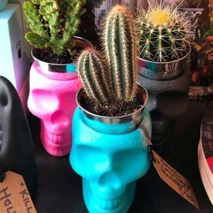 QEEBOO - Plant Pot / Pencil Mexico Blue-2