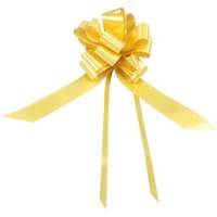 Festive bow on box