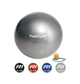 Tunturi Gymball Silver 55 - 90 cm