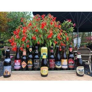Brabantse Boerin Bierpakket