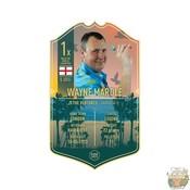 Ultimate Darts Wayne Mardle - Ultimate Darts Card