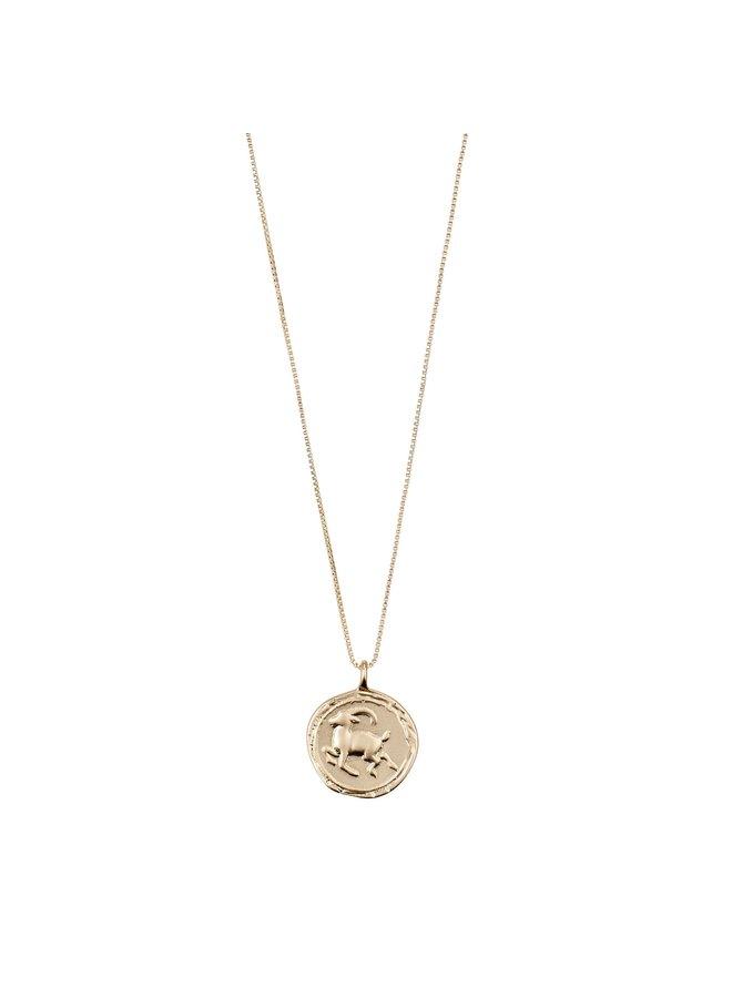 Capricorn horoscoop ketting goud