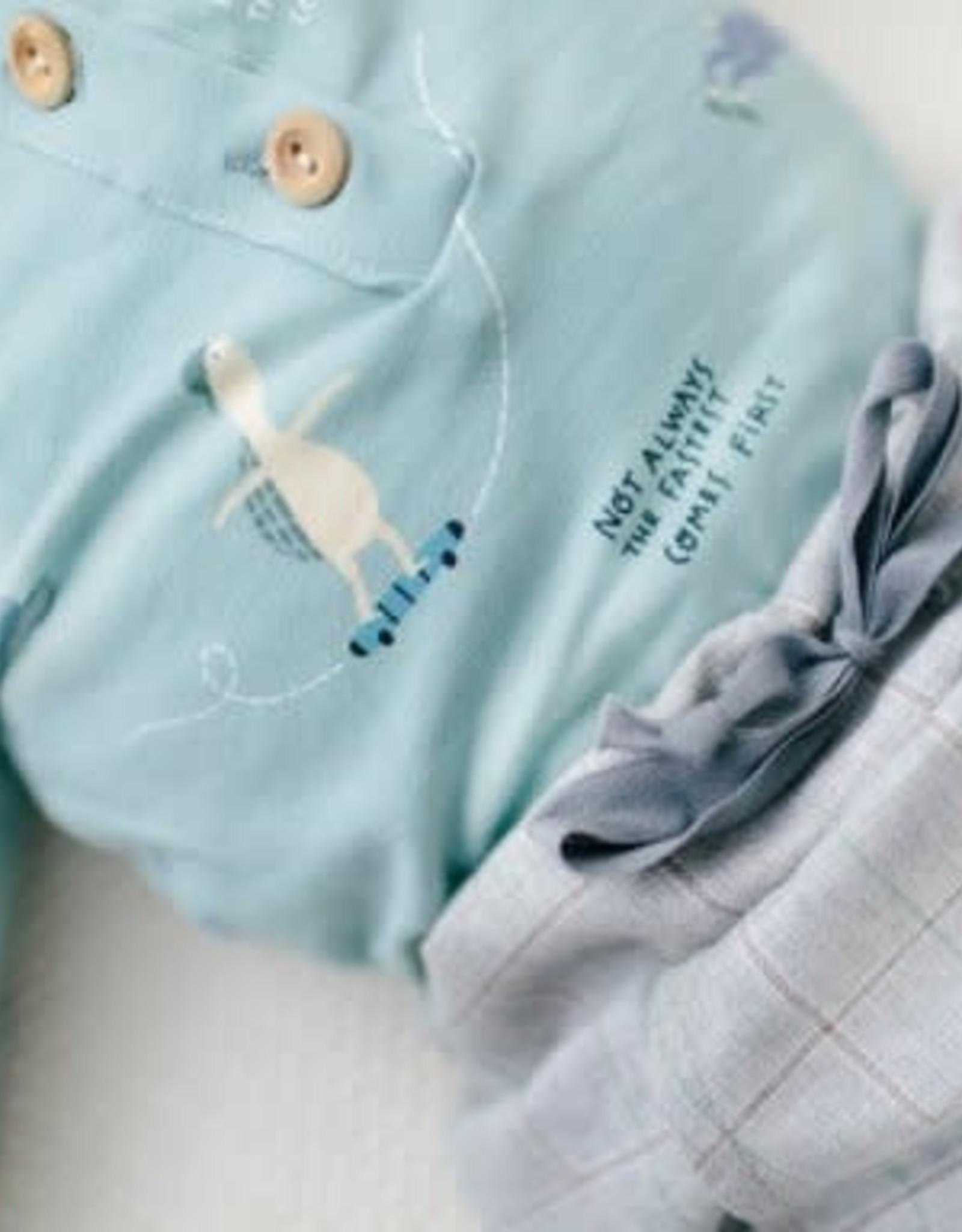 Katia Katia Fabrics jersey 32 - Schildpad
