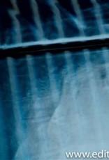 Fibre Mood Fibre mood waterdichte stof, glanzend blauw river jacket