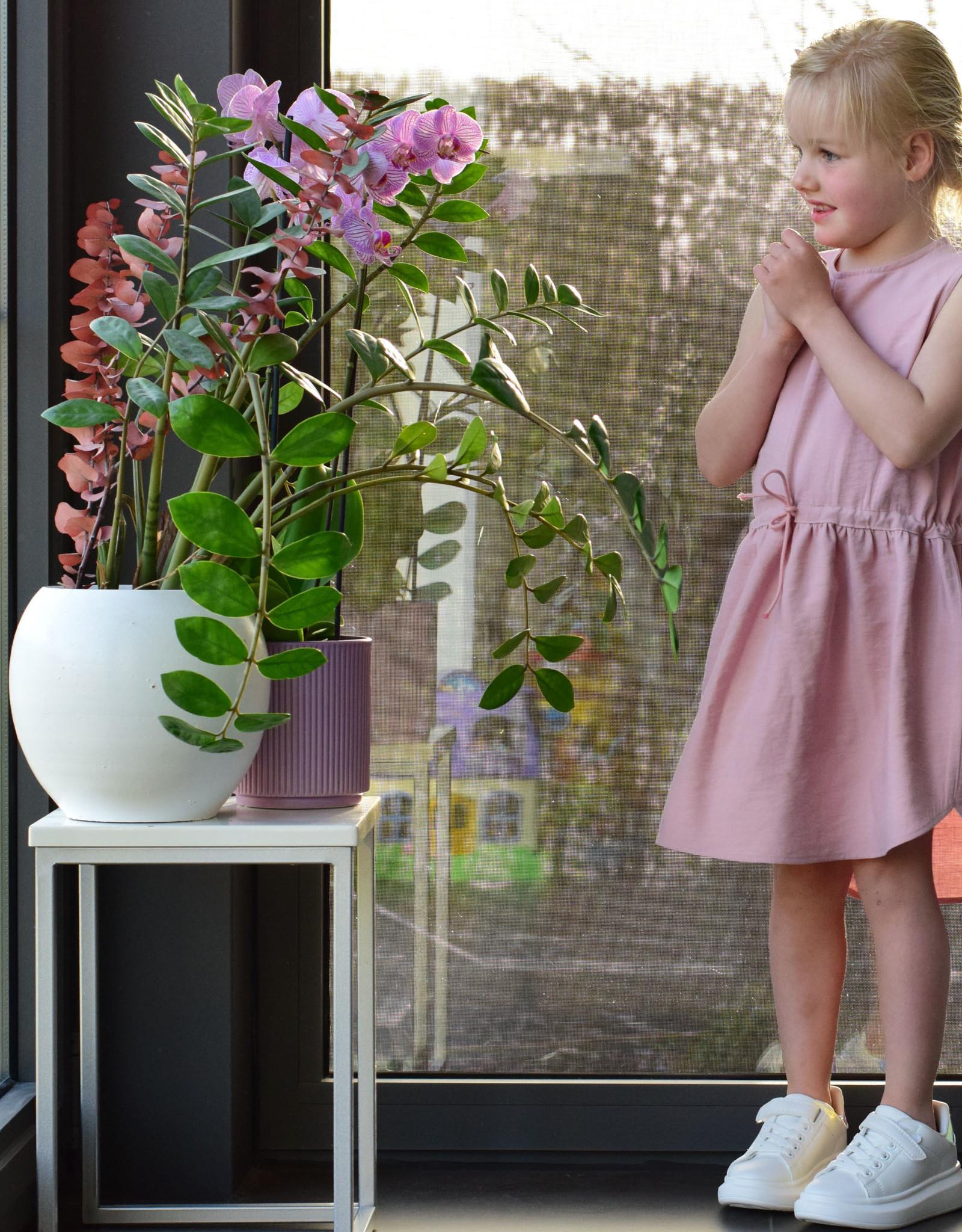 Bel ' Etoile Bel' Etoile papieren patroon lotus meisjes